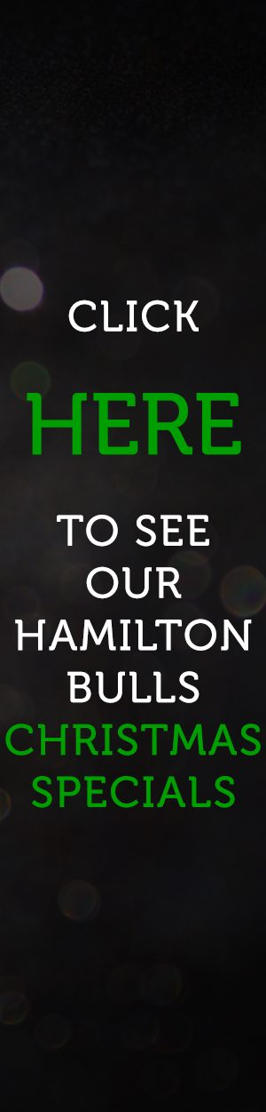 hamilton-bulls-side-website-banner